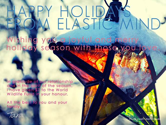 Happy Holidays from Elastic Mind