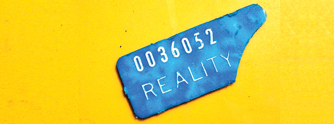 Reality is What You Make It
